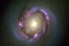 Спиральная галактика NGC 4314, 1998