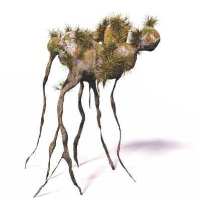 инопланетные растения