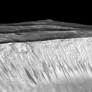 Жизнь на Марсе. Как сохранить ее?