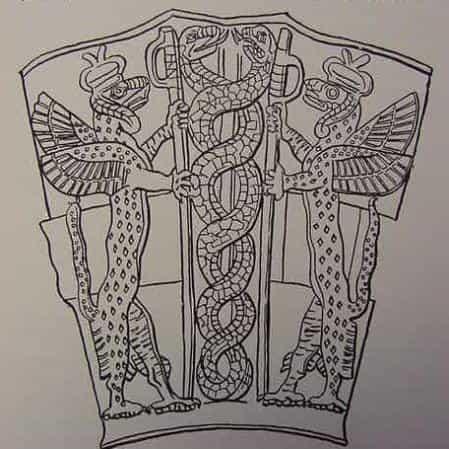 змеи и ДНК
