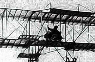 тайна пропавшего пилота