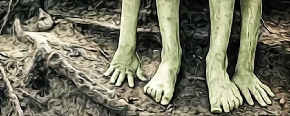 загадка зеленых детей Вулпита