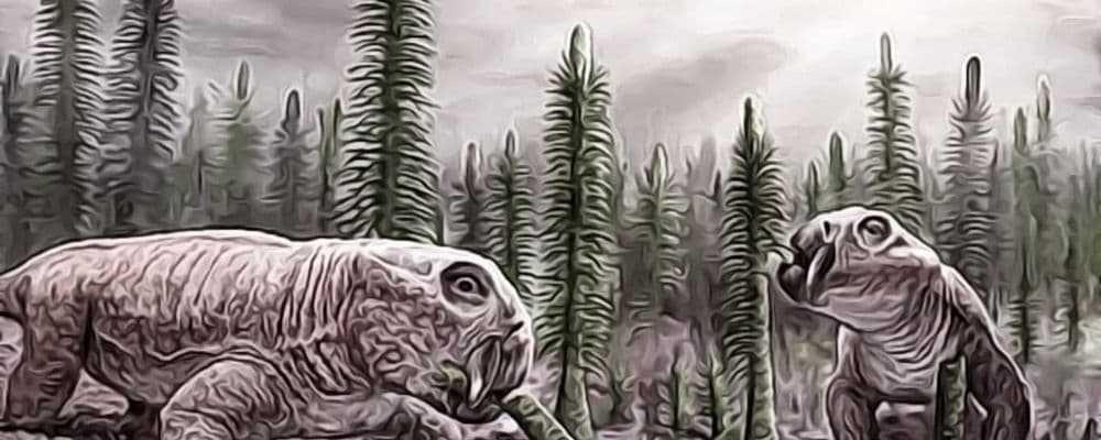 массовые вымирания