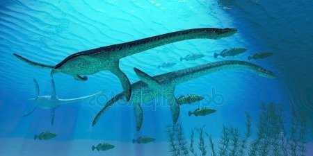 плезиозавры реплитии