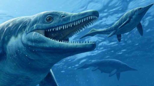 рептилии ихтиозавры