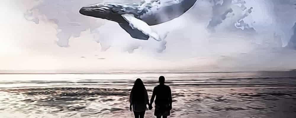легенда об одиноком ките