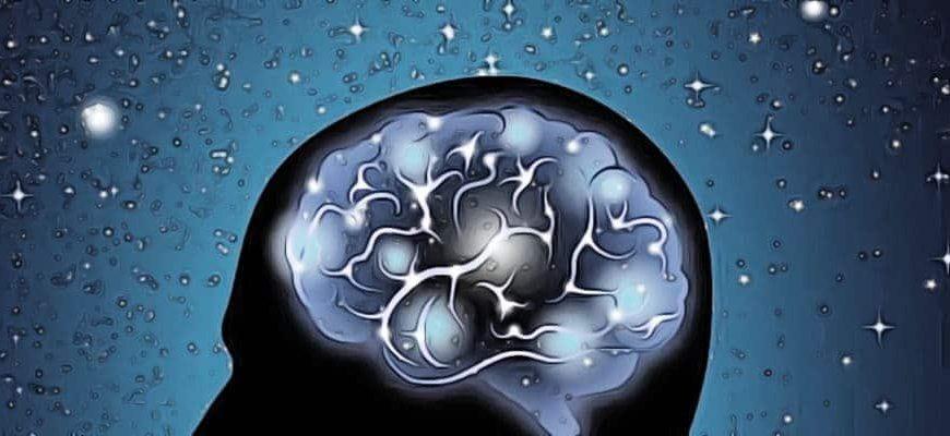 гравитация и человеческий мозг в космосе