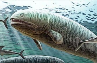 рыбы девонский период
