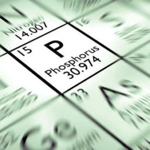 Фосфор. Важнейший элемент для жизни