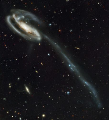 Спиральная галактика Головастик, 2002